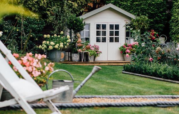 Фотография: Ландшафт в стиле , Сад, Дом и дача, дачный участок, Derevo Park, растения – фото на INMYROOM