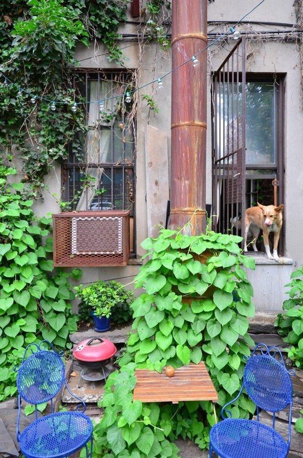 Фото из портфолио 2-х комнатная квартира, East Village, New York – фотографии дизайна интерьеров на INMYROOM