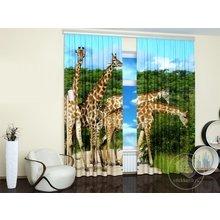 Стильные фотошторы: Приключения жирафов