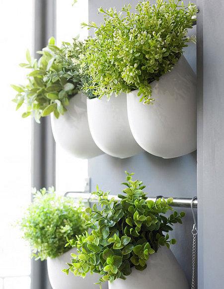 Фотография: Декор в стиле Эко, Балкон, Советы, Зеленый, Оксана Шабалина, овощи на балконе, сад пряных трав на балконе, вертикальное озеленение, что выращивать в тени, огород на балконе, мини-огород на балконе – фото на INMYROOM