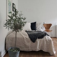 Фото из портфолио  Alfhemsgatan 5, Linnéstaden – фотографии дизайна интерьеров на InMyRoom.ru