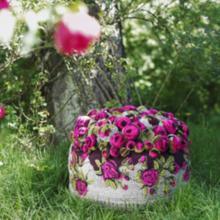 Фото из портфолио Теплые и веселые  – фотографии дизайна интерьеров на INMYROOM
