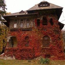 Фотография: Архитектура в стиле , Декор интерьера, Дом, Ландшафт, Стиль жизни – фото на InMyRoom.ru