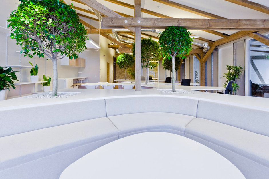 Фотография: Офис в стиле Современный, Декор интерьера, Офисное пространство, Цвет в интерьере, Дома и квартиры, Стены – фото на InMyRoom.ru