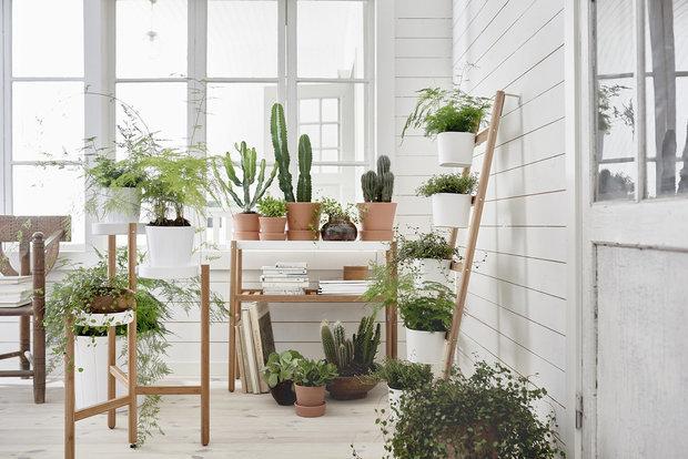 Фотография: Балкон в стиле Эко,  – фото на INMYROOM