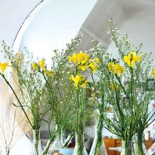 """Фото из портфолио Квартира в романтичном винтажном стиле со вкусом и оттенком  """"Зелёного яблочка"""" – фотографии дизайна интерьеров на INMYROOM"""