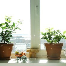 Фото из портфолио №2 – фотографии дизайна интерьеров на InMyRoom.ru
