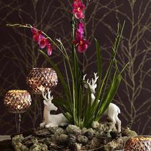 Фотография: Флористика в стиле , Декор интерьера, DIY – фото на InMyRoom.ru