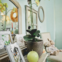 Фотография: Декор в стиле Кантри, Индустрия, Новости, Прованс, Посуда – фото на InMyRoom.ru
