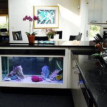 Фотография: Кухня и столовая в стиле Современный, Декор интерьера, Малогабаритная квартира, Декор, Мебель и свет, Дом и дача, аквариум в интерьере, аквариум – фото на InMyRoom.ru