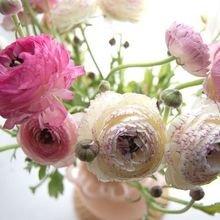 Фотография: Флористика в стиле , Стиль жизни, Декор свадьбы, Цветы – фото на InMyRoom.ru