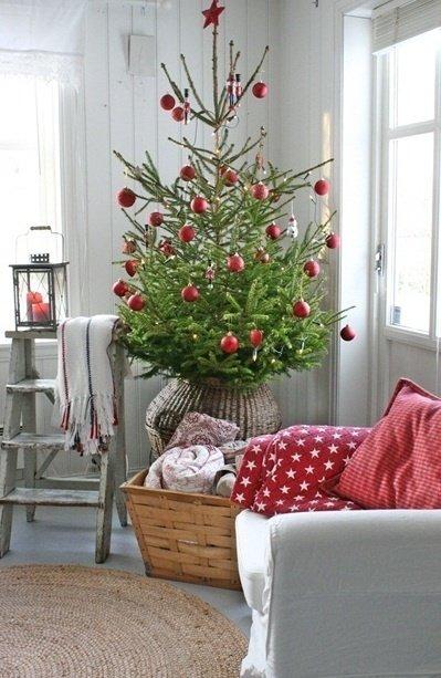 Фотография:  в стиле , Советы, как выбрать елку к Новому году – фото на InMyRoom.ru