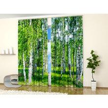 Фотошторы для гостиной: Березовый лес