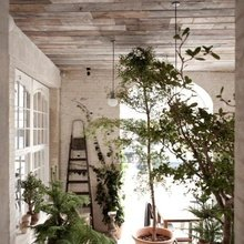 Фотография: Флористика в стиле , Кухня и столовая, Дизайн интерьера – фото на InMyRoom.ru