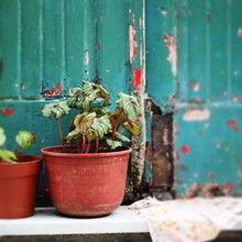 Фото из портфолио red satchel – фотографии дизайна интерьеров на INMYROOM