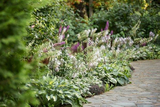 Фото из портфолио Пурпурный сад – фотографии дизайна интерьеров на INMYROOM