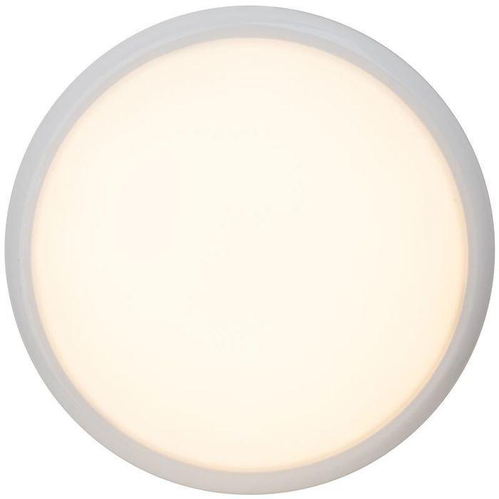 Потолочный светильник Brilliant Vigor