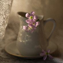 Фото из портфолио For Eyes and Soul... – фотографии дизайна интерьеров на InMyRoom.ru