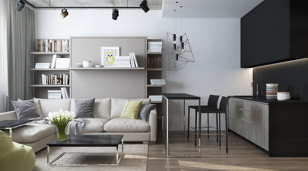Фотография: Гостиная в стиле Современный, Спальня, Квартира, Студия, Гид, 1 комната – фото на InMyRoom.ru