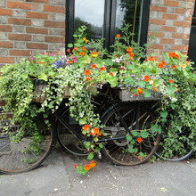 Фотография: Ландшафт в стиле Современный, Кухня и столовая, Стиль жизни, Дача, Для дачи и сада – фото на InMyRoom.ru