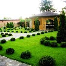 Фото из портфолио Примеры возможных вариантов озеленения – фотографии дизайна интерьеров на InMyRoom.ru