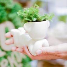 Набор для выращивания Экочеловеки eco мечтатель с ушками
