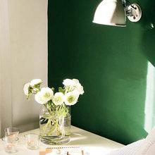Фотография: Флористика в стиле , Малогабаритная квартира, Квартира, Цвет в интерьере, Дома и квартиры, Зеленый – фото на InMyRoom.ru