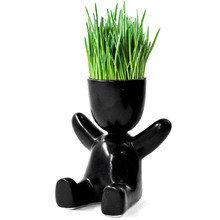 Набор для выращивания eco малыш в черном