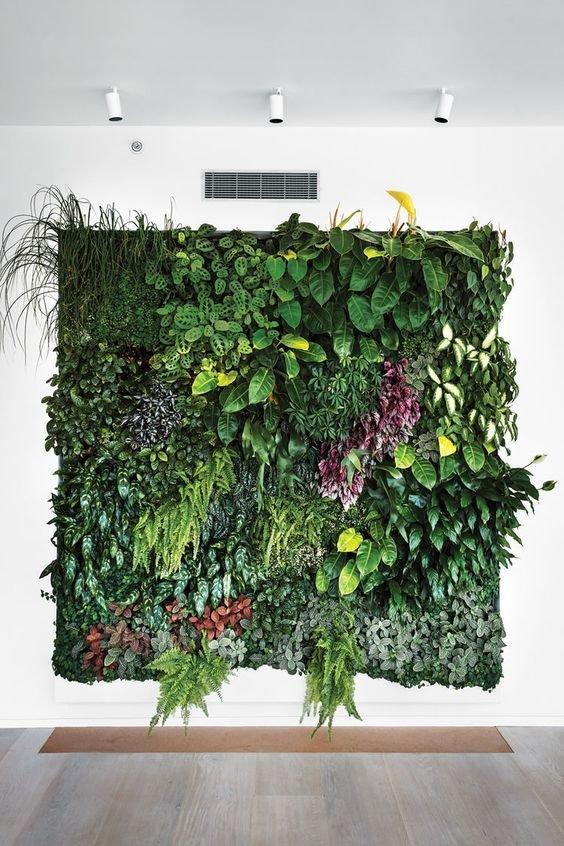 Фотография: Декор в стиле Эко, Советы, Vibe Life Technologies – фото на INMYROOM