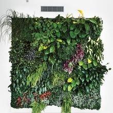 Фотография: Декор в стиле Эко, Советы, Vibe Life Technologies – фото на InMyRoom.ru