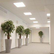 Фотография: Офис в стиле Современный, Декор интерьера, Офисное пространство, Ландшафт, Стиль жизни – фото на InMyRoom.ru