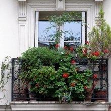 Фотография: Флористика в стиле , Балкон, Карта покупок – фото на InMyRoom.ru
