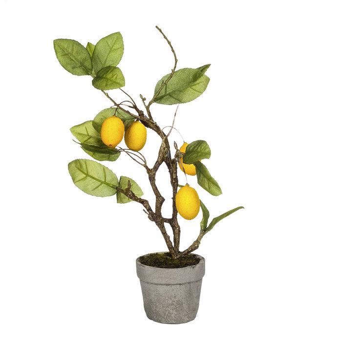 Ветка ягодная