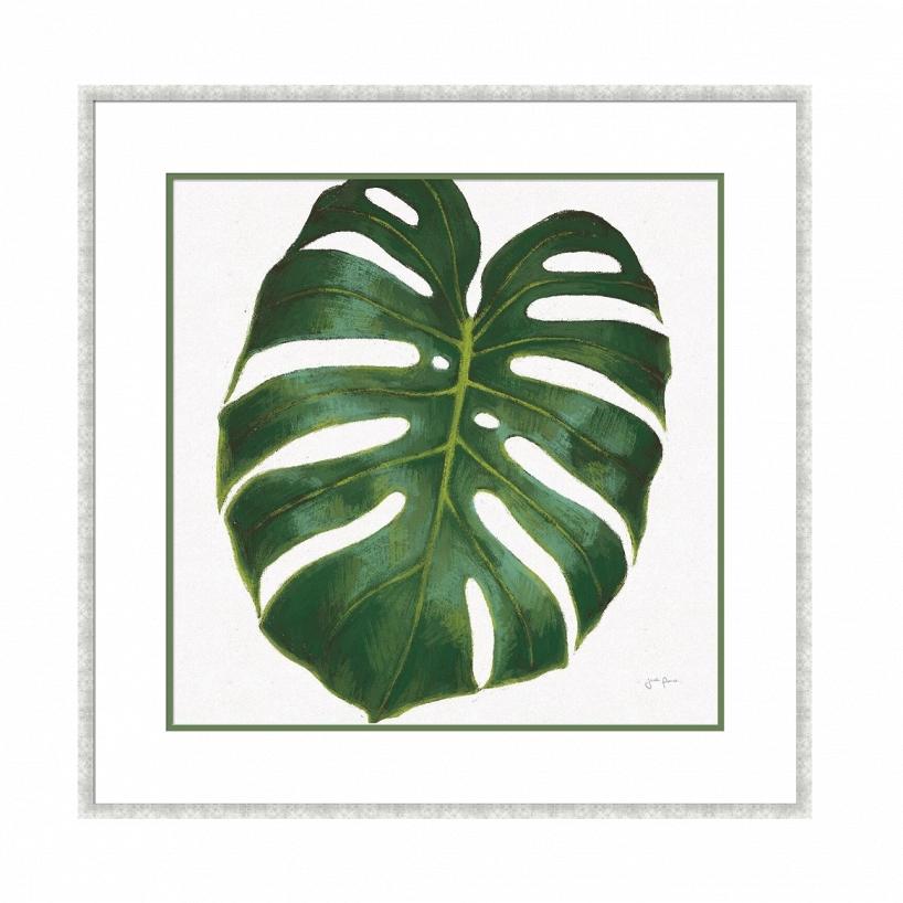 Купить Постер в раме Monstera с изображением листа тропического растения, inmyroom, Китай