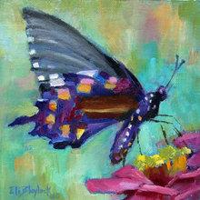 Картина (репродукция, постер): SPOTTED BUTTERFLY ON PINK FLOWER - Элизабет Блейлок