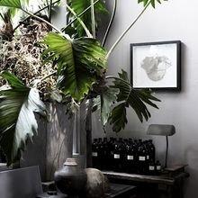 Фотография: Декор в стиле Кантри, Малогабаритная квартира, Квартира, Флористика, Стиль жизни, Зимний сад – фото на InMyRoom.ru