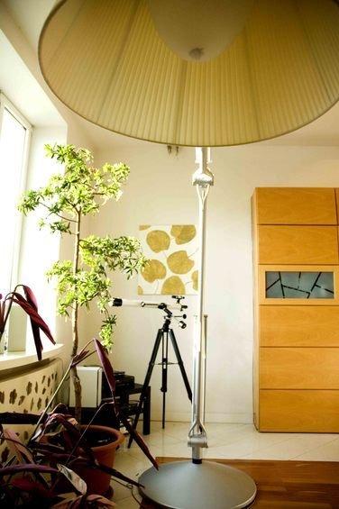 Фотография: Мебель и свет в стиле Лофт, Декор интерьера, Дом, Декор дома, Картина – фото на InMyRoom.ru