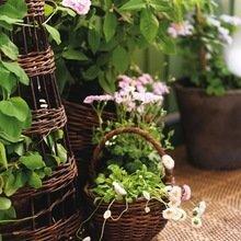 Фотография: Флористика в стиле , Балкон, Декор интерьера, Квартира, Интерьер комнат – фото на InMyRoom.ru