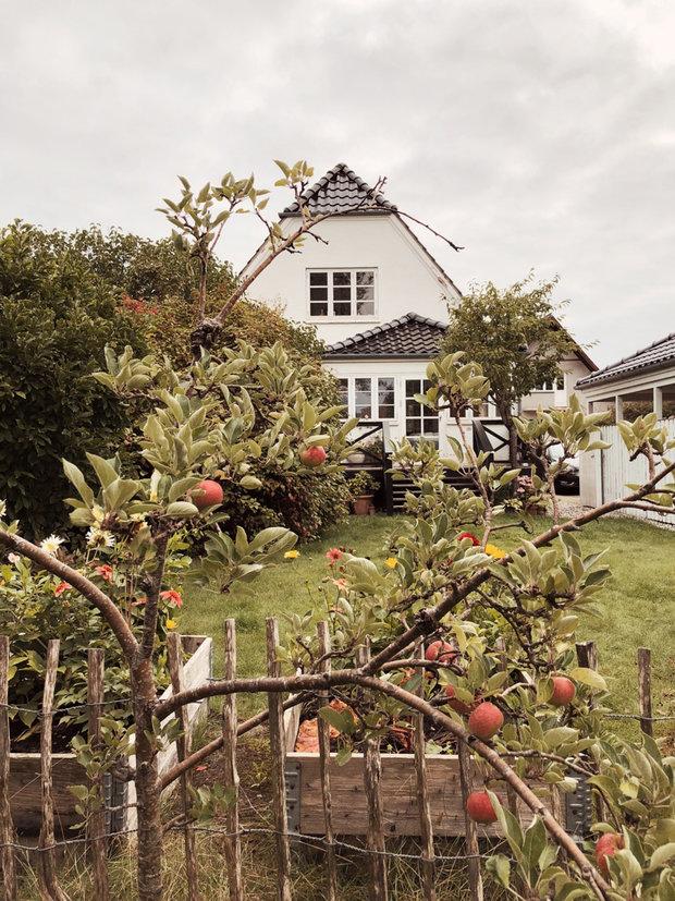Фотография: Архитектура в стиле , Кухня и столовая, Гостиная, Детская, Декор интерьера, Дом, Дания, ИКЕА, Дом и дача, Более 90 метров – фото на INMYROOM