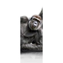 """Стильная полиптих для декора стен """"Семья горилл"""""""
