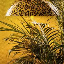 Фотография: Мебель и свет в стиле Современный, Эклектика, Декор интерьера, Декор дома, Стиль жизни, Эко – фото на InMyRoom.ru