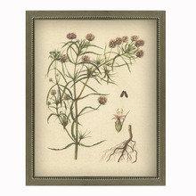 Фото из портфолио Ботаника – фотографии дизайна интерьеров на INMYROOM
