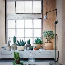 Фотография: Декор в стиле Лофт, Декор интерьера, Квартира, Советы, Подоконник, Окно – фото на InMyRoom.ru