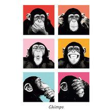 Картина (репродукция, постер): Chimps No. 2 -