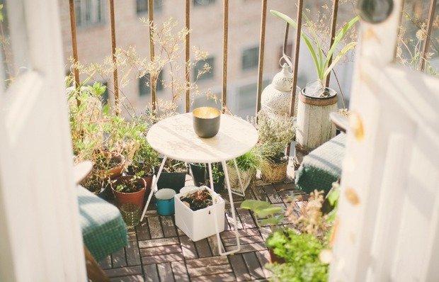 Фотография: Флористика в стиле , Балкон, Квартира, Ландшафт, Дом и дача, огород на балконе, мини-огород на балконе, Leroy Merlin, Наталия Шушлебина – фото на INMYROOM