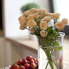 Фотография: Флористика в стиле , Малогабаритная квартира, Квартира, Дома и квартиры – фото на InMyRoom.ru