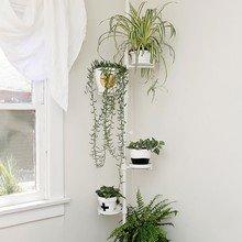 Фото из портфолио Проект дизайнера Энн Сейдж – фотографии дизайна интерьеров на INMYROOM