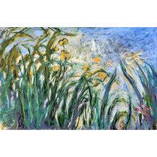 Картина (репродукция, постер): Yellow Irises and Malva, 1914-17 - Клод Моне