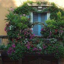 Фотография: Флористика в стиле , Балкон, Ландшафт, Декор, Терраса, Советы, Мария Шумская, Есения Семипядная, элегантный городской балкон, винтажные вещи на балконе, восточный декор для балкона, балкон в средиземноморском стиле, ландшафтный дизайн для балкона, горизонтальное озеленение, хвойные растения на балконе – фото на InMyRoom.ru