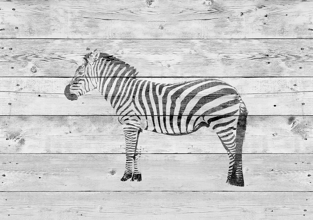 постеры зебра фото переехала крошечную